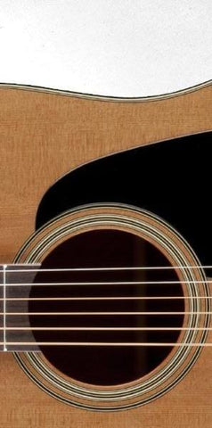 Takamine P1DC Pro-Series Acoustic Electric Guitar, Takamine, Haworth Music