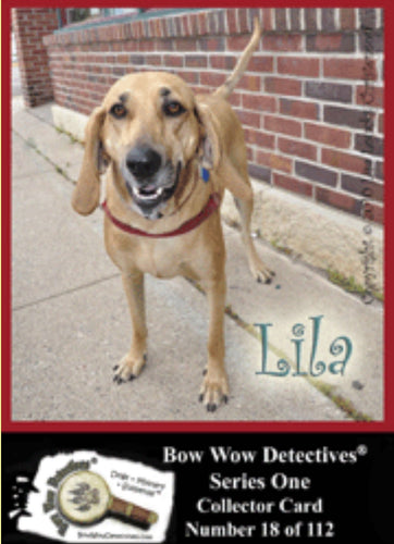 Electronic  Photo Traders™ | Lila  | Bow Wow Detectives®