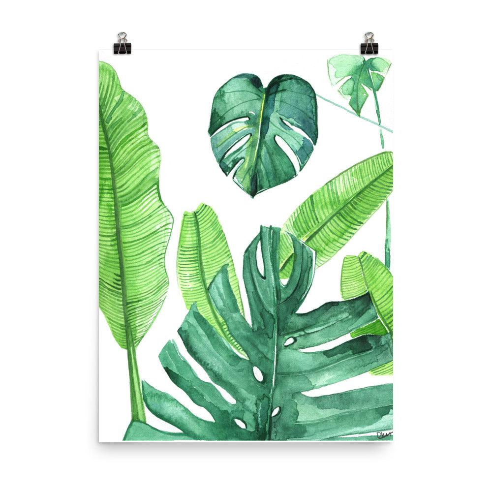 Qmnsgayna31 Em Search images from huge database learn how to draw tropical leaf pictures using these outlines or print just for coloring. https shoprongrong com products tropical leaves