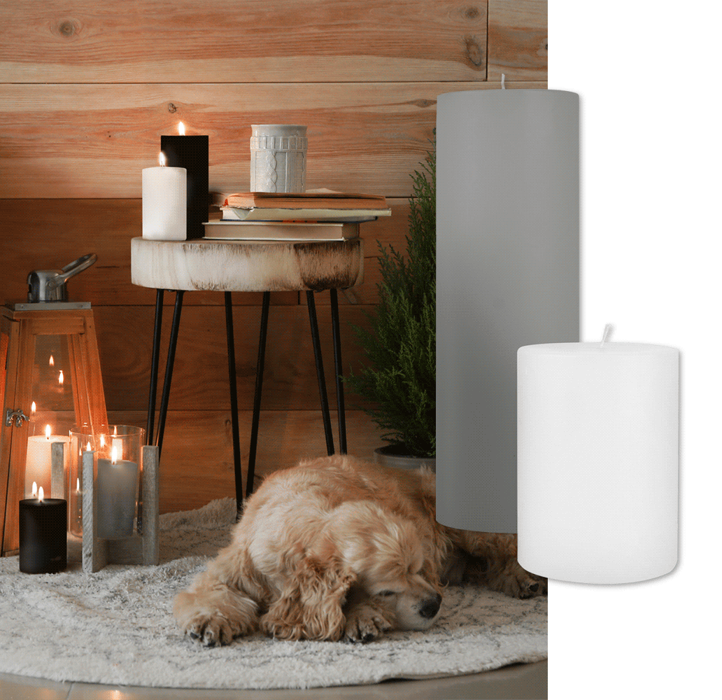 gray and white pillar candle with dog