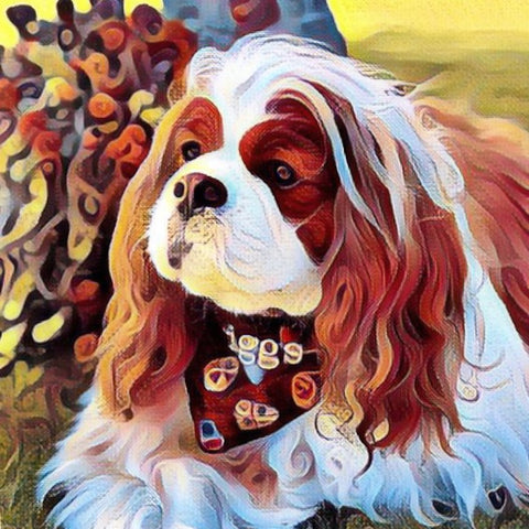 King Charles Cavalier Spaniel, Pepper's Pet Project, pet rescue fund raiser, Shay Candles and Soaps
