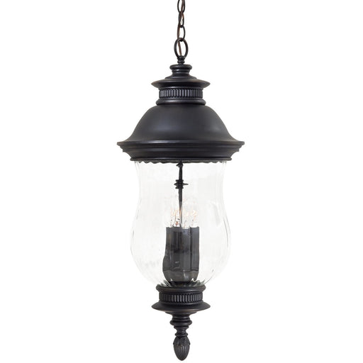 Minka Lavery Great Outdoor 8904-94 Newport 4 Light Pendant Light