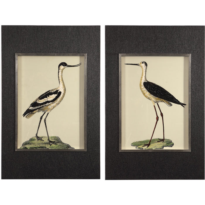 Uttermost 41586 Birds On The Shore Prints Set of 2