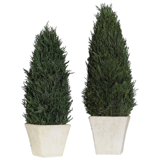 Uttermost 60140 Cypress Cone Topiaries Set of 2