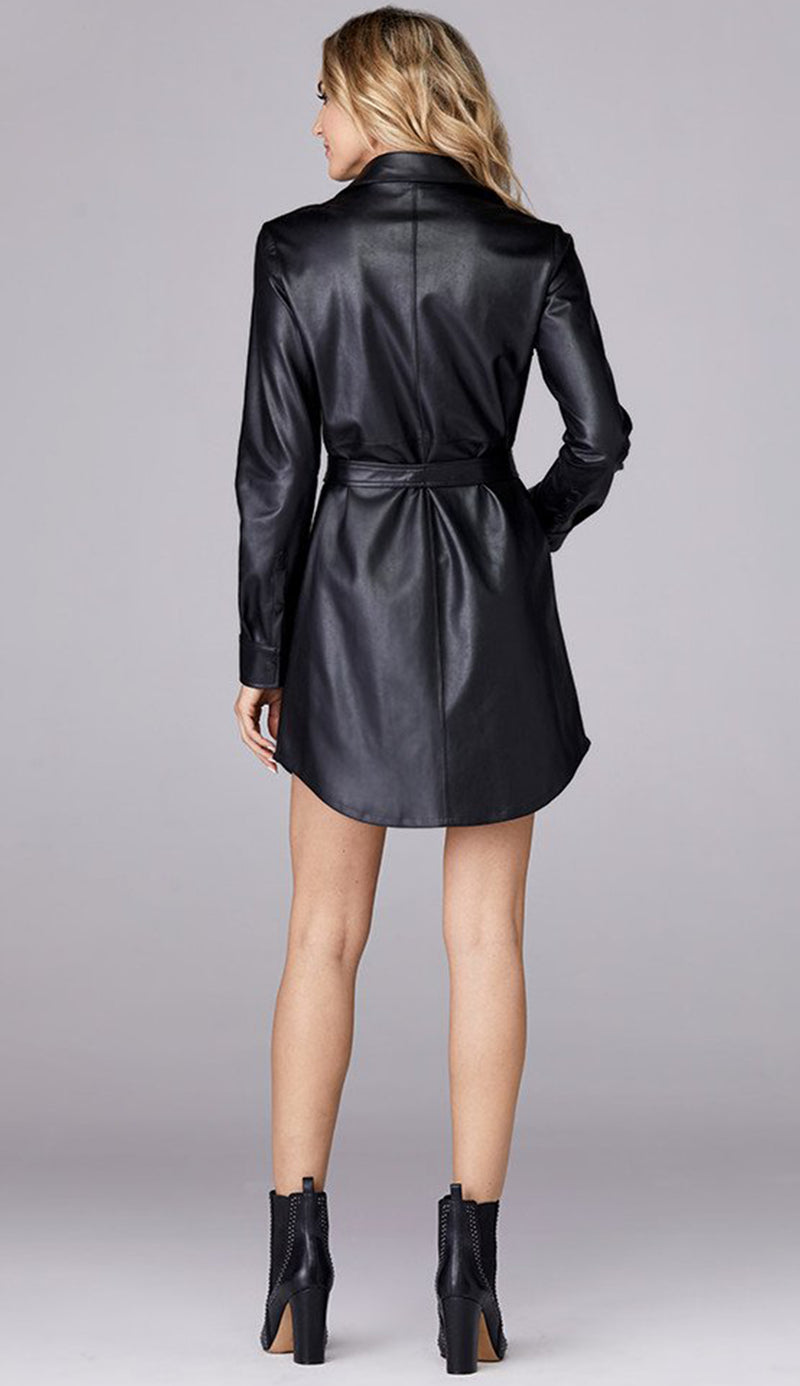 Jordan Shirt Dress / Tunic - Black
