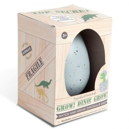 Top Secret Hatch & Grow Dinosaur Egg