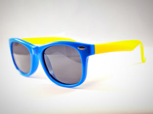 Central Park Wayfarers in Blue