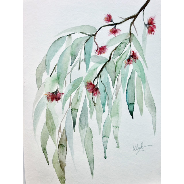 Painting: White Gum - by Nicola Waghorn