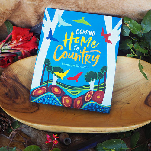 Coming home to country - bronwyn bancroft
