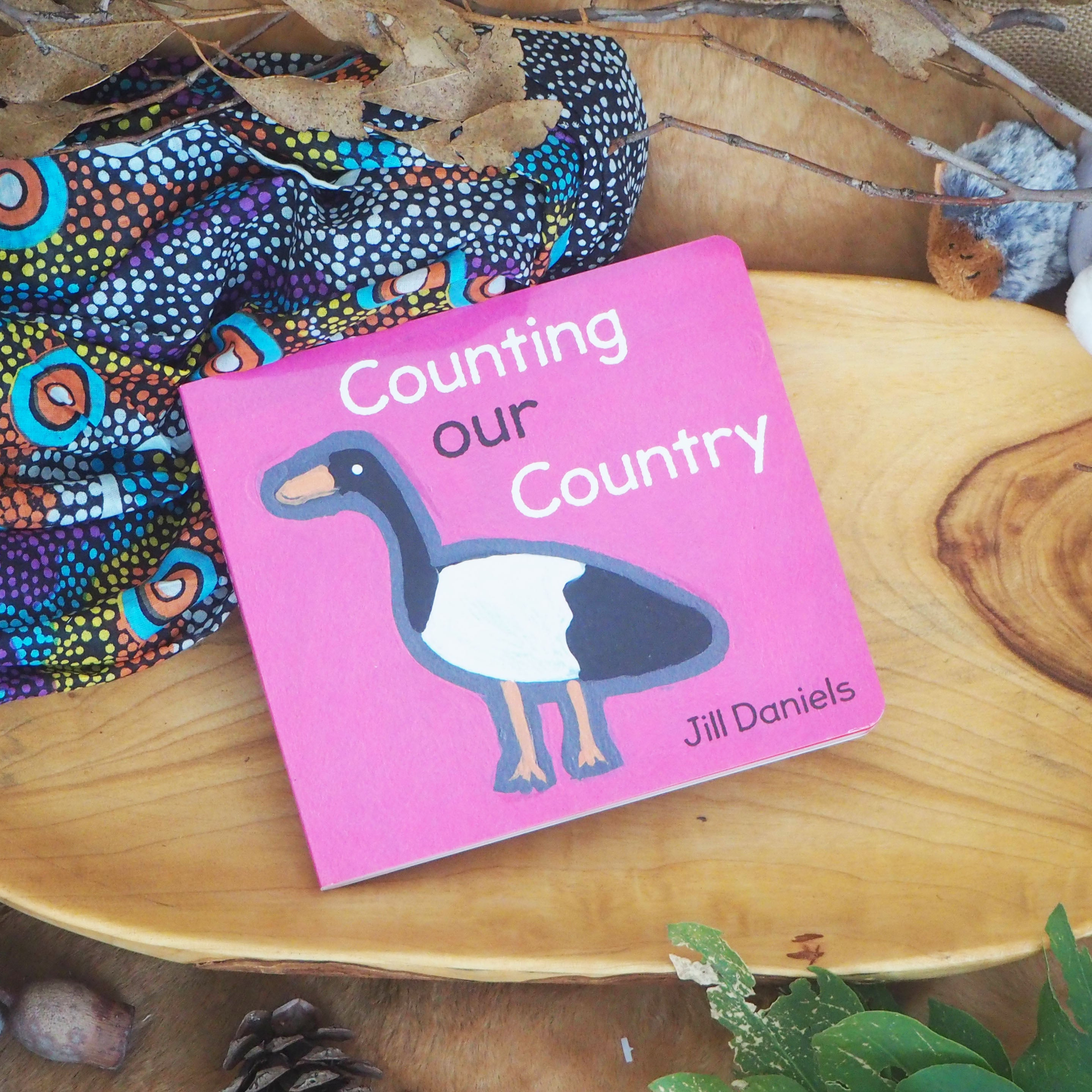 Counting Our Country - Jill Daniels
