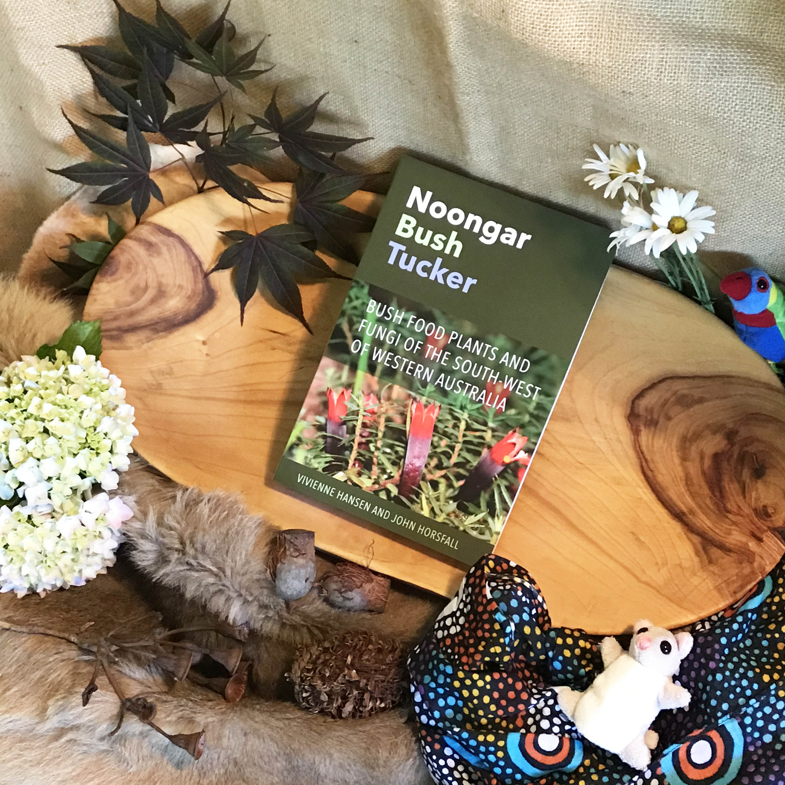 Noongar Bush Tucker Bush Food Plants and Fungi of the South-West of Western Australia - Vivienne Hansen