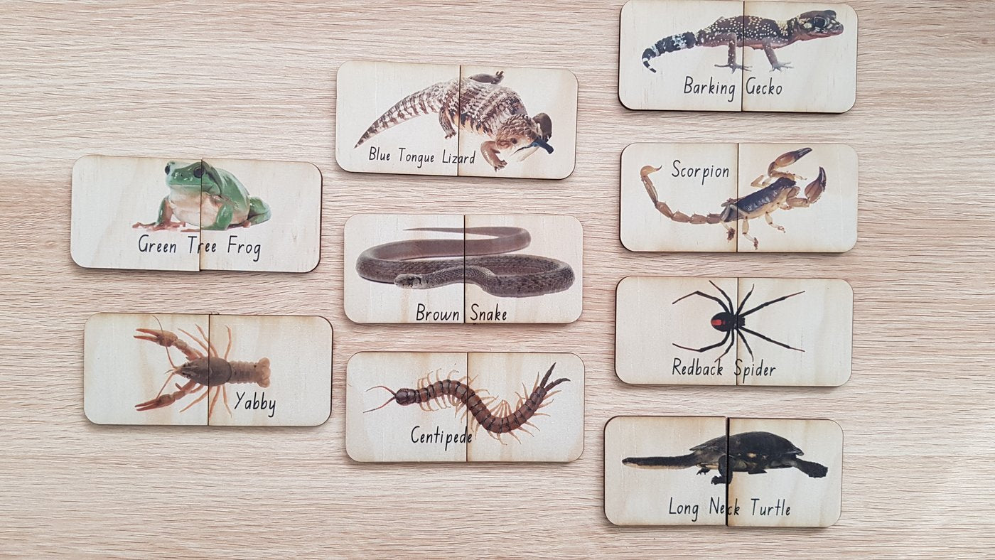 18 Piece Australian Themed Matching Puzzles - Creepy Crawlies