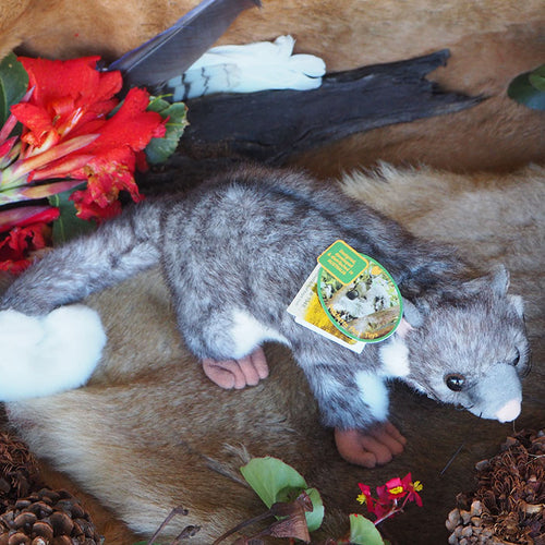 Plush Ring-tail Possum