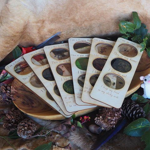 Aboriginal Tools Memory Matching Card Game