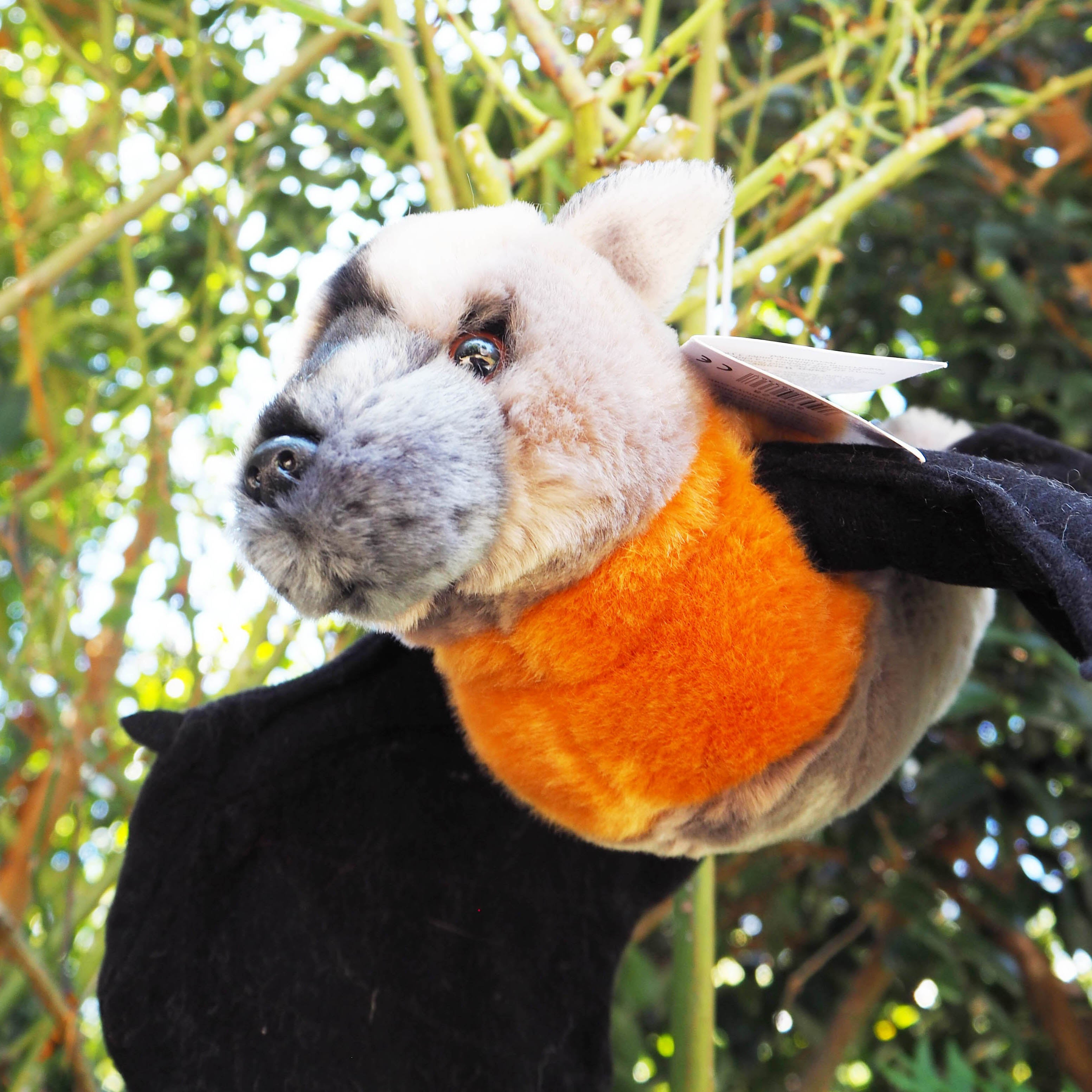 Plush Australian Flying Fox
