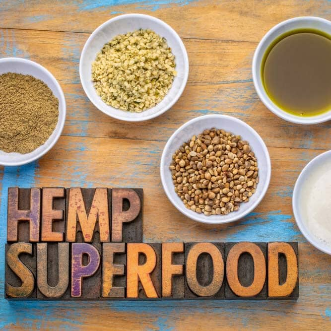 Origin and Evolution of Hemp Foods