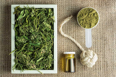 Things hemp can make