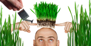 There Is No Hair Loss Cure: The Only Remedy Is Shaving it Off