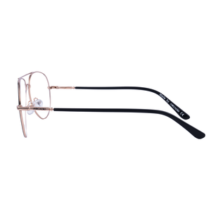 Timeless classic Double bridge two tone metal frame FF368