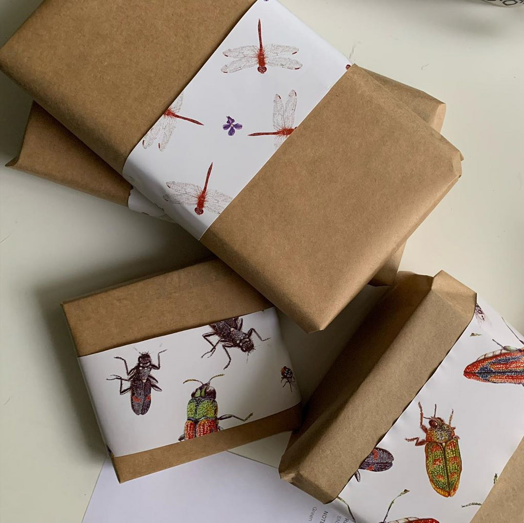 studio Nikulinsky gift wrap. Brown paper with gift wrap bands. Beetles and dragonfly gift wrap.