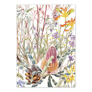 Open image in slideshow, studio-nikulinsky A6 Card: Wildflowers of the Swan Coastal Plain by Philippa Nikulinsky