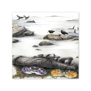 Rock Pools Square Card Art Card painted by Philippa Nikulinsky - studio Nikulinsky