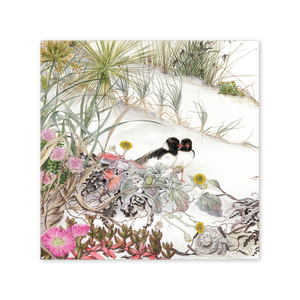 Hooded Plover on Beach Daisy Square Card Art Card painted by Philippa Nikulinsky - studio Nikulinsky