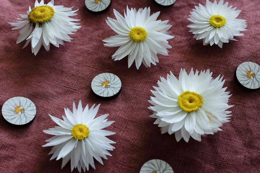 Wood Stud Earrings: Everlasting Daisy