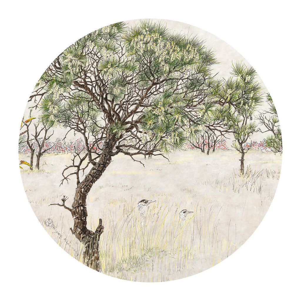 Pocket Mirror: Hakea Grevillea & Spinifex