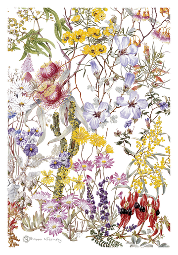Goldfields Mulga Wildflowers Linen Tea Towel
