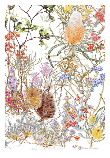 Northern Heathland Wildflowers Linen Tea Towel