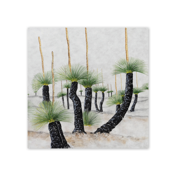studio-nikulinsky Square Card: Desert Grasstrees by Philippa Nikulinsky