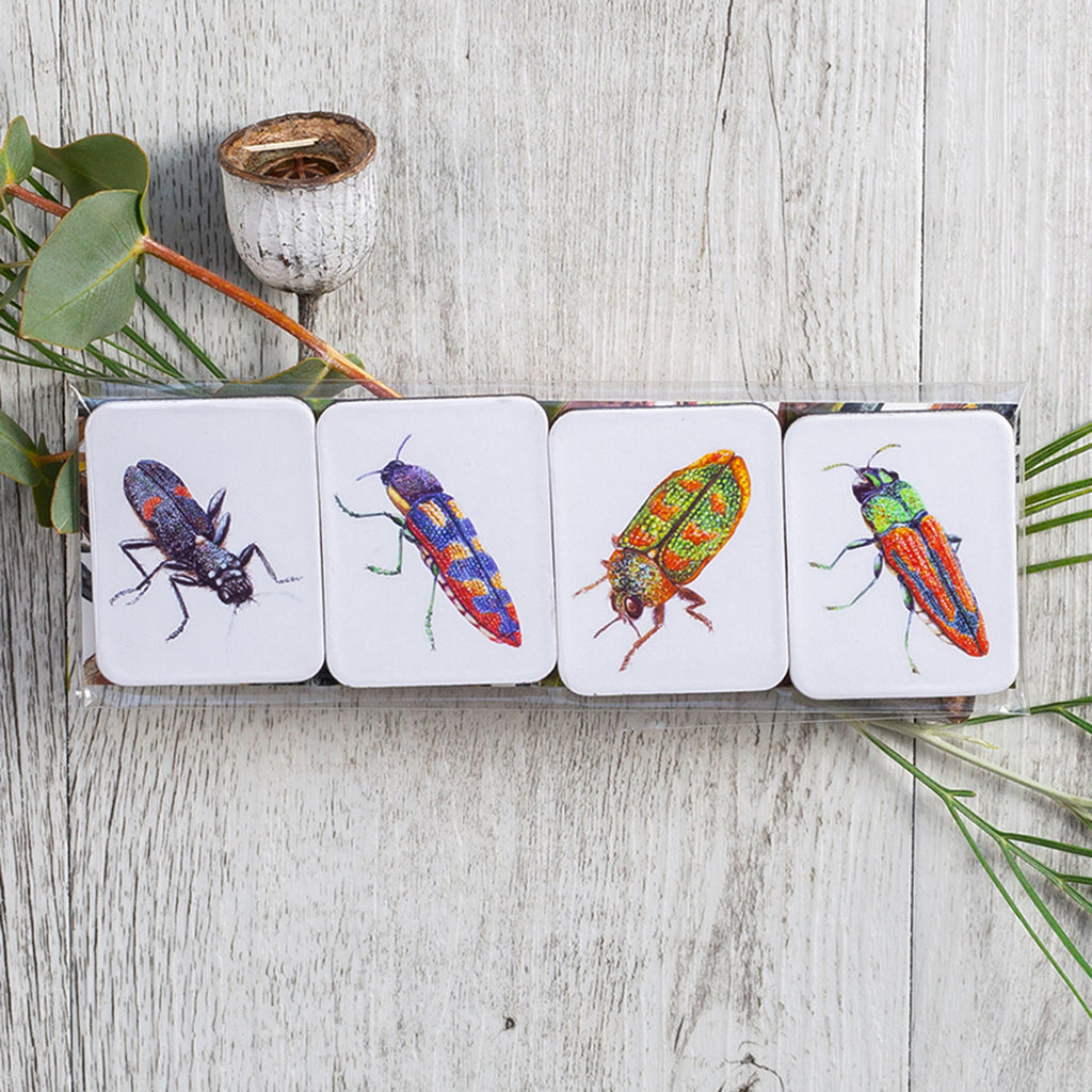 Jewel Beetle Four Magnet Set  painted by Philippa Nikulinsky - studio Nikulinsky