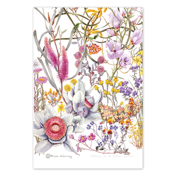 Northern Wheatbelt Wildflowers Linen Tea Towel