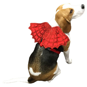 http://www.ebay.com/i/Devil-Spiderweb-Dog-Harness-Red-S-Boots-Barkley-153-/272947396246