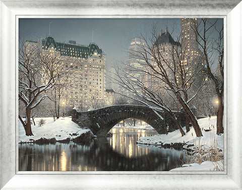 New York Central Park Winter Picture