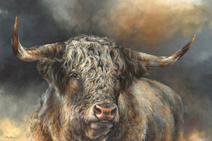 Grand Kyloe Bull Canvas