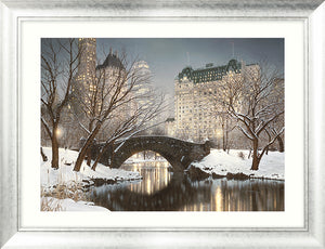 Central Park Winter Picture
