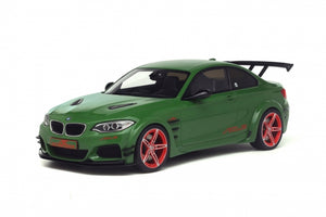 GT146 - AC SCHNITZER ACL2 GREEN