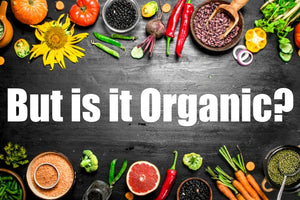 Link Between Eating Organic And Reduced Cancer Risk
