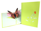 Big Butterfly Pop Up Card