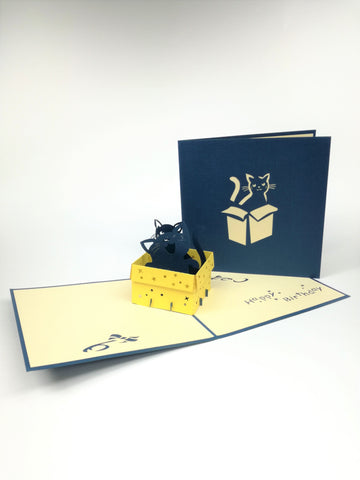 Navy Cat In Box Pop Up Card