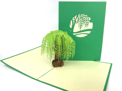 Big Willow Pop Up Card