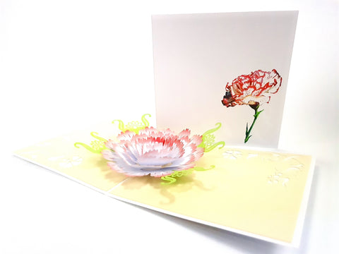 Carnation Flower Pop Up Card 3d