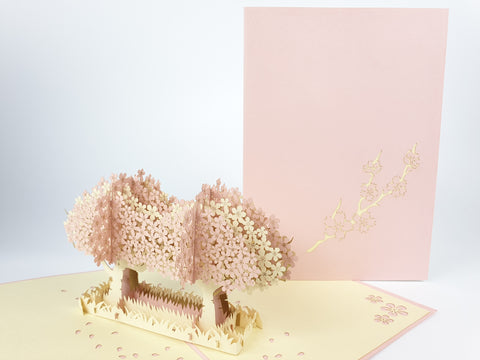 Twin Pink Cherry Blossom Pop Up Card
