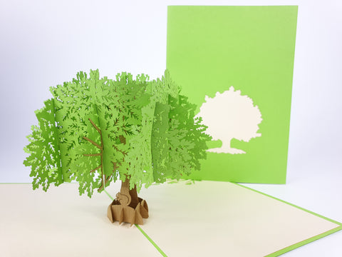 Oak Tree Pop Up Card