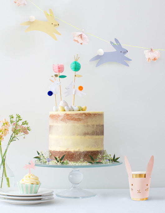 Peter Rabbit Party Baking Accessories