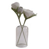 glass vase, white flowers, green stem