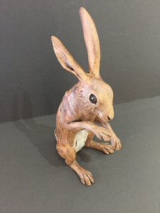 Brown Hare (Medium)