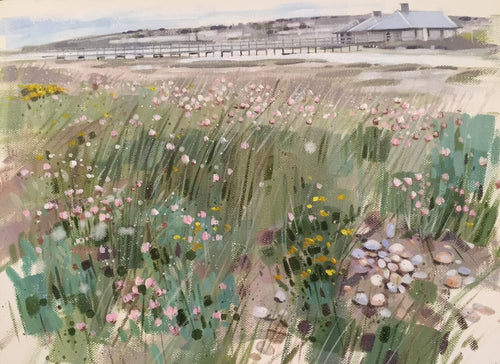 Sea Thrift Chesil Beach
